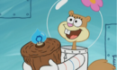 Sandy Cheeks - Perfect Chemistry.png