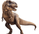 Dinosaurusten heimot ja suvut