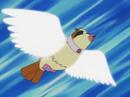 Trainer School Pidgey Wing Attack.png
