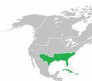 Confederate States (Quebec Independence)