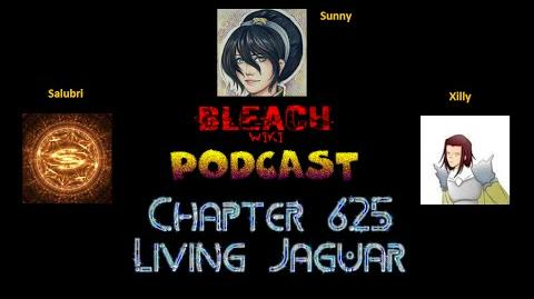 Bleach Wikia Podcast - Chapter 625 Review