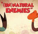 (Un)Natural Enemies