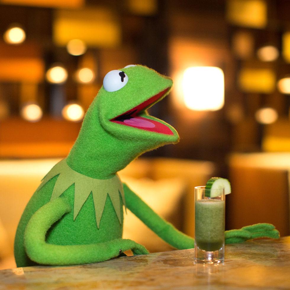 Kermit Drinking Kermit enjoys a mosquito
