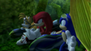Knuckles et Sonic caches.png