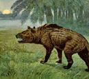 Creodontos