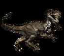 Novaraptor - skórka Early Acces
