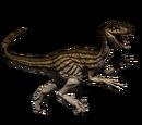 Novaraptor - skórka Gold Ivy