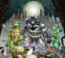 Batman/Teenage Mutant Ninja Turtles