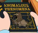 Anomalous Phenomena