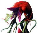 Plante 43