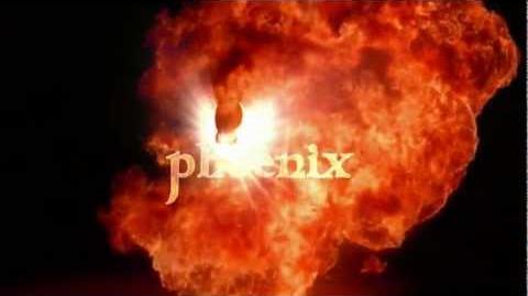 Phoenix 5-Jahres-Jubiläum