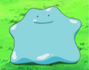 Ditto 2.png