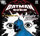 Batman and Robin Vol.1 22
