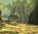 Bosque de Faron
