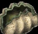 Giant Clam (HENDRIX)