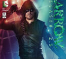 Arrow: Season 2.5 Vol 1 11