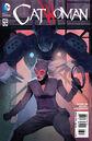 Catwoman Vol 4 43.jpg