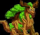 Dragón Silvicultura