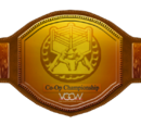 VGCW Co-Op Champions