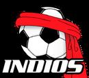 Indios de Ciudad Juárez