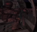 Delta force door gunner
