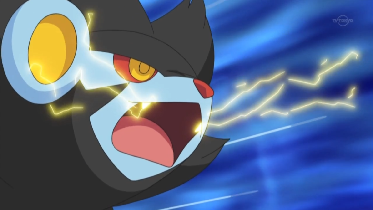 What moves can luxray learn - answers.com