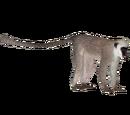 Hanuman Langur (DutchDesigns)