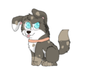A Match Made: SmokeyXSerena's Pups