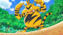 Paul Electabuzz.png