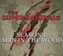 Cabin in the Woods (The Supernaturals)