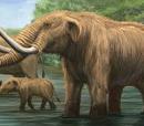 Tiny and the Mastodon