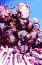 Unbeatable Squirrel Girl Vol 2 1 Kirby Monster Variant Textless.jpg