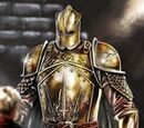 The Silent Kingsguard's Armor