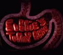Bubbie's Tummy Ache