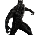 Black Panther/Gallery