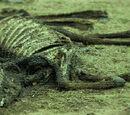 Massacre of Garron II