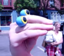Oobi in Brookline