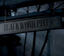Blackwood Pines