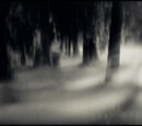 The Nameless Mist
