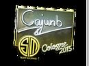 Csgo-col2015-sig cajunb foil large.png