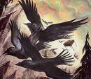 Métamorphose d'un corbeau en secrétaire