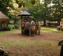 Merlin's Village