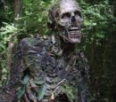 IMAGE COMICS: Walking Dead bio Swamp Thang Walker