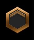 Ranks - Bronze 5.png
