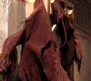 The Lion-Slashed Jacket of Sacagawea