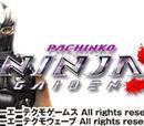 CR Ninja Gaiden 2