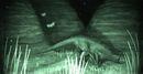 Spinolurus Foto.jpg