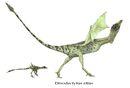 Dinodactylus draconic fauna of new zealand by hyrotrioskjan.jpg
