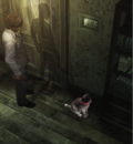 CatLocation.png