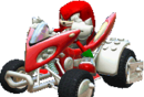 Knuckles (Sonic & SEGA All-stars Racing DS).png